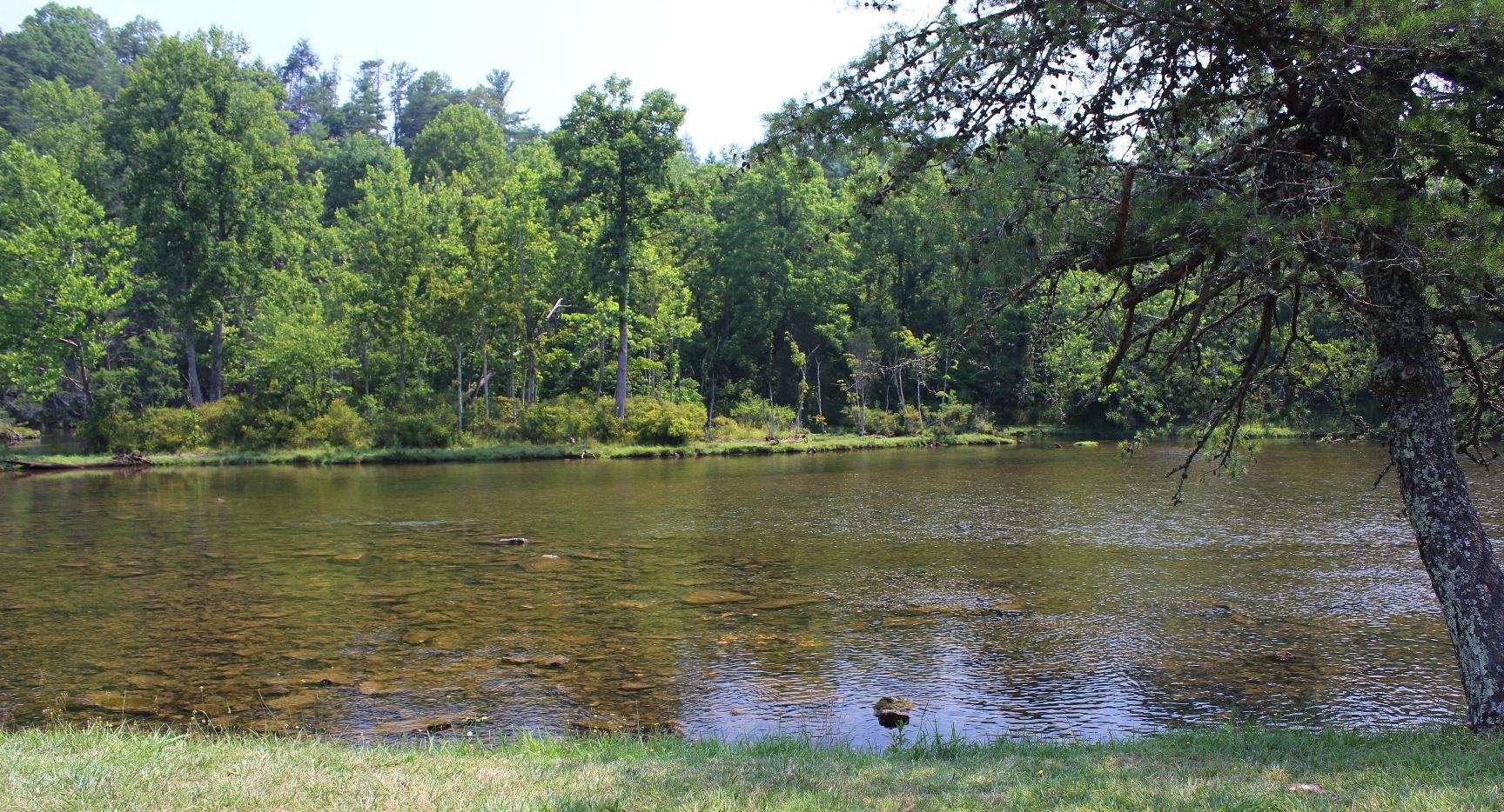 South Holston River Abingdon Outdoors