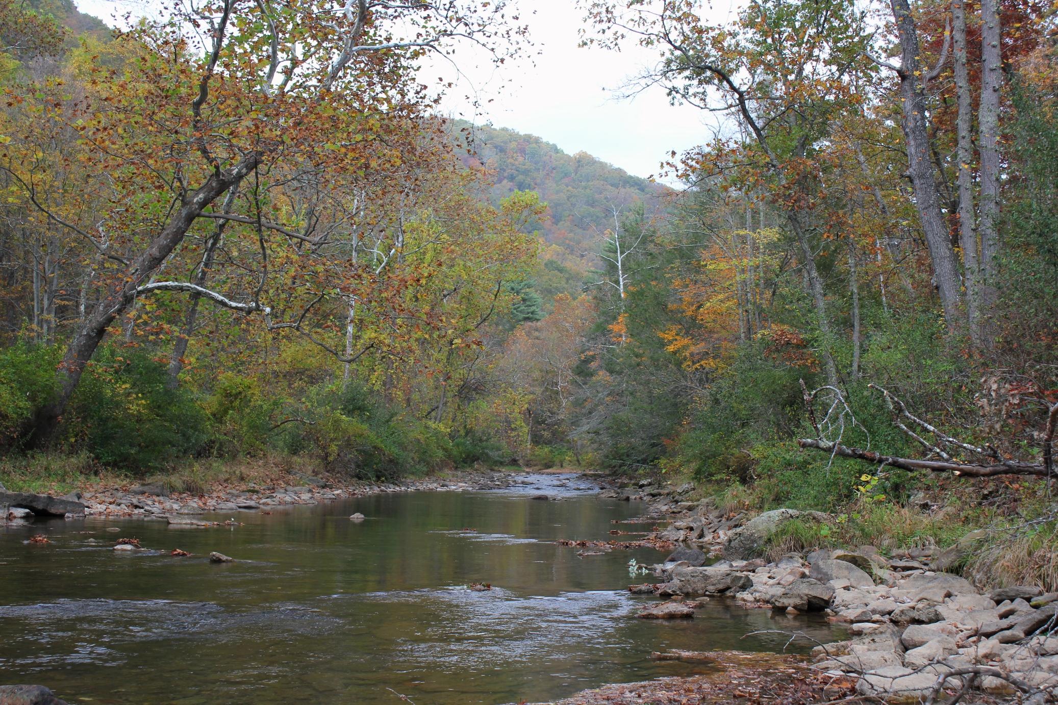 Jackson River in Hidden Valley