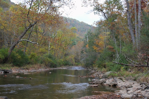 Jackson River in Hidden Valley