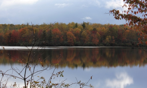 Fall Colors Reflect on the Lake